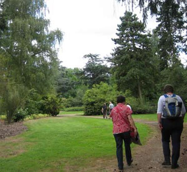 Arboretum Bokrijk Foto: Joke Kooy