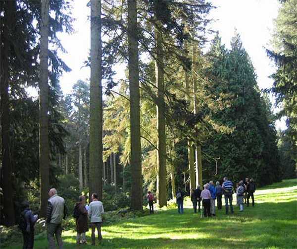 Geografisch Arboretum Tervuren
