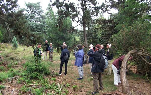 Martin Heutink verzorgt een rondleiding Foto: Wout Kromhout