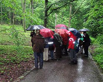 In de Botanische Tuin van Ulm hadden we de paraplu hard nodig.