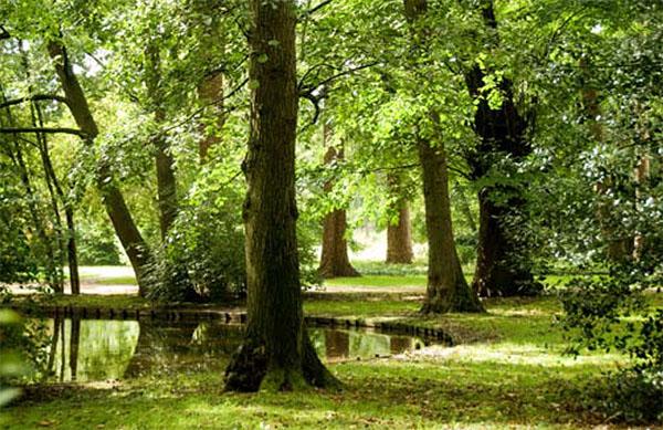De fraaie Forstbotanische Garten te Kleve