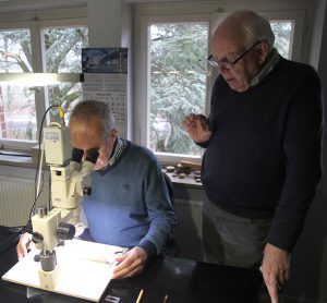 Harry de Coo meet de dikte van de jaarringen onder het toeziend oog van Erhard Pressler