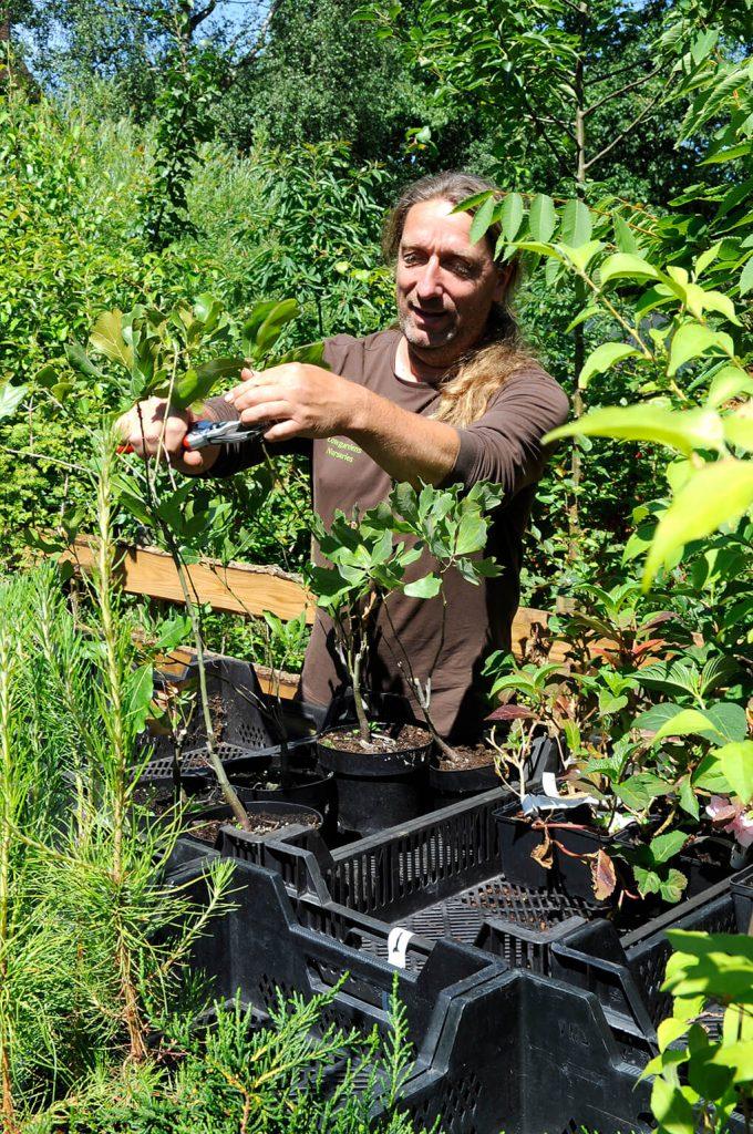 Peter Vanlaerhoven, oog voor de meerwaarde van planten
